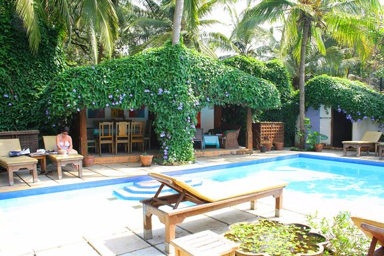 Divar Island, Indien: Relax by the excellent pool