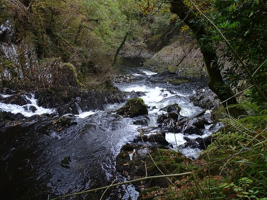 Betws-y-Coed, UK: View downward from the bottom of the steps