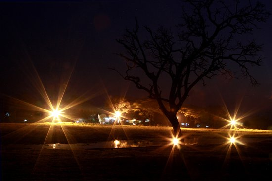 Hwange National Park, Zimbábue: Night life at Ganda