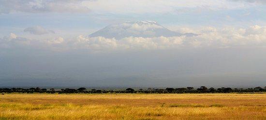 Amboseli National Park, Kenia: Kili in the background of a wonderful plain