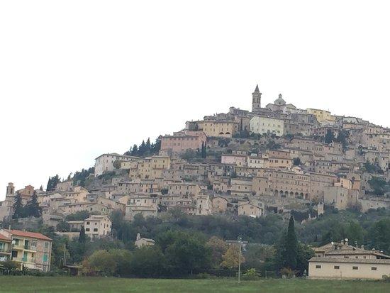 Wine Link Italy: Trevi