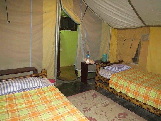 Bilde fra Nameri Eco Camp