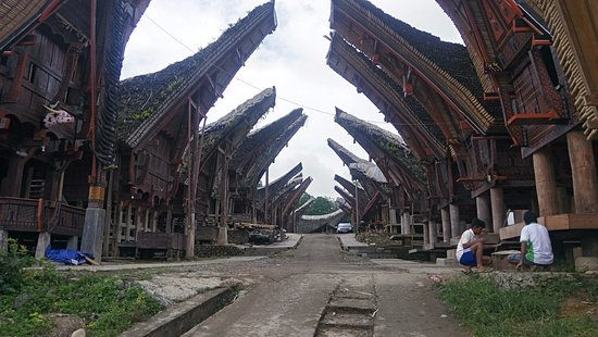 Toraja Tour Guide