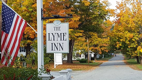 Lyme Picture