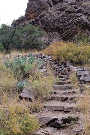 Las Cruces, Nowy Meksyk: photo7.jpg
