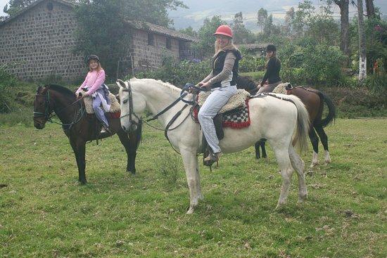 Lasso, Ecuador: Ecuador