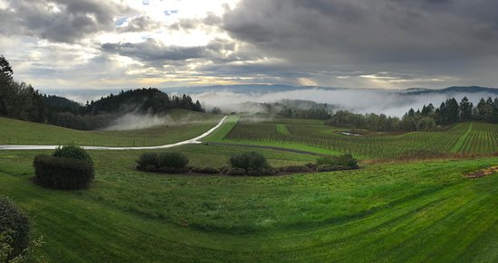 ‪‪Youngberg Hill Vineyards & Inn‬: View of the valley from the veranda‬