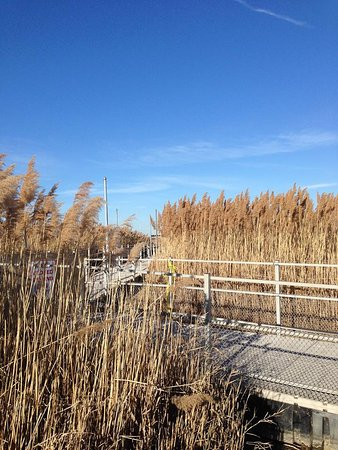 Lyndhurst, NJ: Good boardwalks