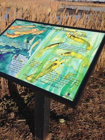 Lyndhurst, Nueva Jersey: Good explainer panels