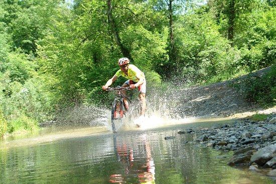 Mtb bike tour in Montaione