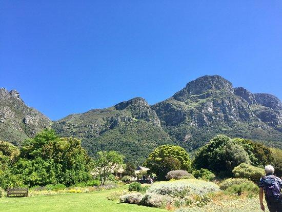 Claremont, Sør-Afrika: Der Kirstenbosch ein Ausflugsziel