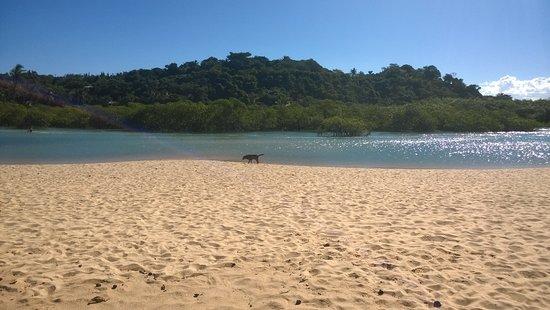 Nativos Beach: Praia do nativos