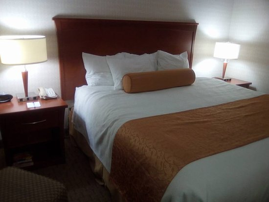 BEST WESTERN PLUS Kitchener-Waterloo-billede