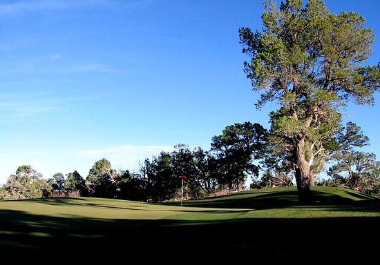 Monticello, UT: green complex
