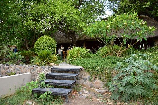 Thamalakane River Lodge: Blick zur Bar und dem Essbereich