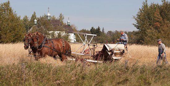 Sherwood Park, Canada: Costumed role-players at harvest time.