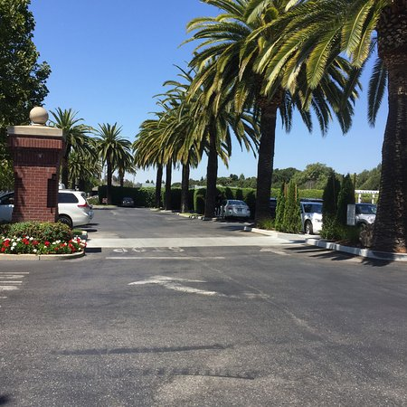 Menlo Park, CA: Beautifully manicured grounds, with palm trees. Looks like one imagines California would!