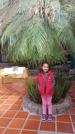 Puembo Photo