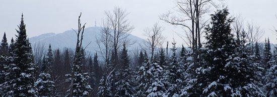 Eastman, Canadá: Vue sur Mont Sylvio Lacharité(de face) et Orford (de dos)
