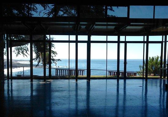 Ragged Point: Deve ser bom dançar aqui olhando o Pacífico!