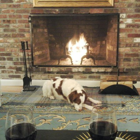 Barnstable, MA: Every night Breeze would head for this spot in front of the fireplace.