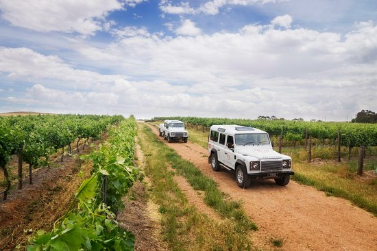 Marananga, Australia: Discover the great vineyards of the Barossa Valley with Two Hands Wines