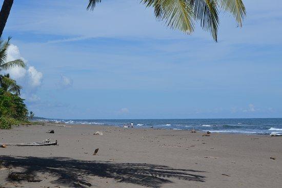 Tortuguero, كوستاريكا: Beach