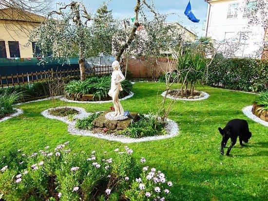 Crespina, Italia: Stupendo giardino!