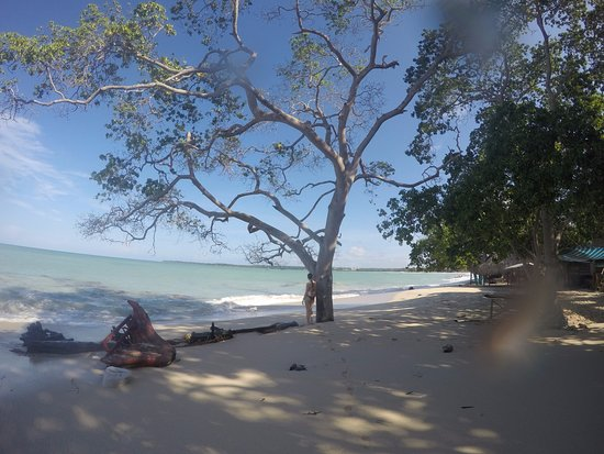 바루 섬 이미지