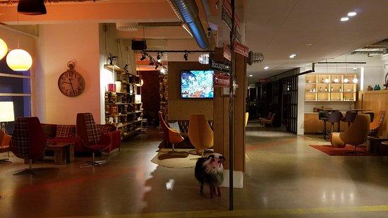 Icelandair Hotel Reykjavik Marina: Hotel lobby