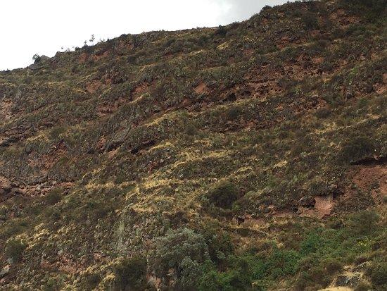 Pisaq, Peru: Antiguas tumbas incas en el cañon de Kitamayo.