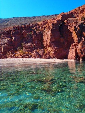Fun Baja Whale Watching: Espiritu Santo Island