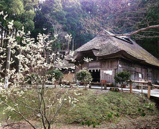 伝承館外観 - Foto van Ogashinzan Traditional Museum, Oga - TripAdvisor