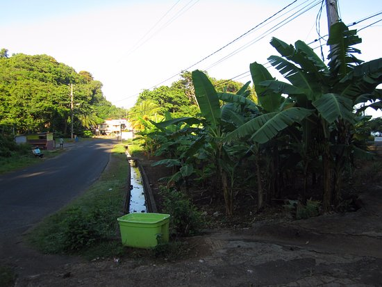 Calibishie, Dominica: main road outside entrance
