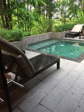 Capella Singapore: Outdoor private pool