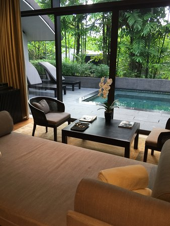 Capella Singapore: View of plunge pool from living area