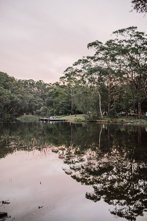 Royal National Park照片