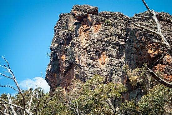 Halls Gap, Australia: look up!