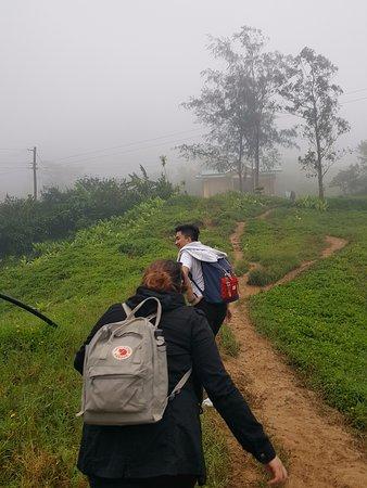 Dalaguete, Philippines: Foggy climb for us. We went during rainy season.
