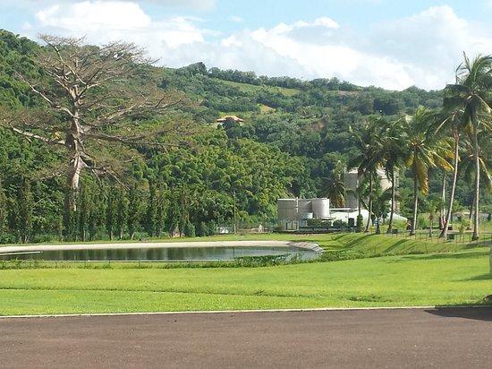 Saint-Pierre, Martinik: Visite distillerie