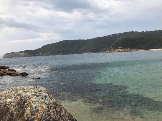 Killcare, أستراليا: Bouddi Coastal walk to Maitland Bay