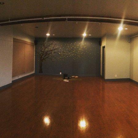 Zephyr Cove, NV: Svadhyaya Studio: are primary practice space.