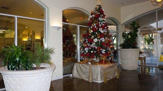 Oasis Las Vegas RV Resort: Christmas time!