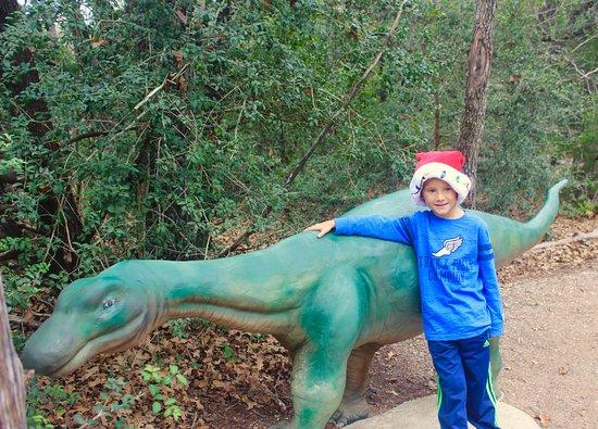 Cedar Creek, TX: Baby dinosaur