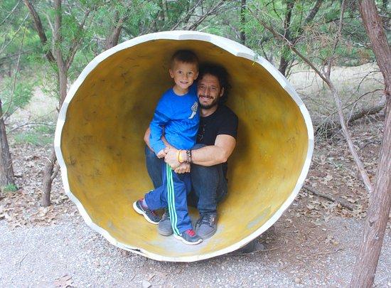 Cedar Creek, Техас: Dinosaur egg