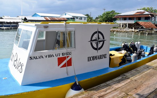 Utila, Honduras: Dive Boat