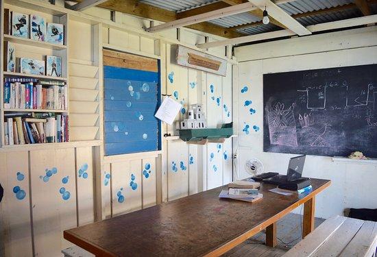 Utila, Honduras: Diving Classroom