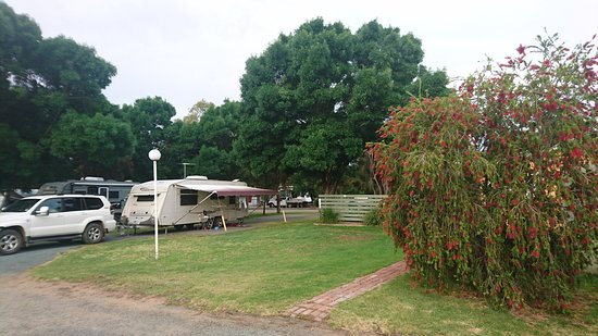 Hay, Avustralya: DSC_0355_large.jpg