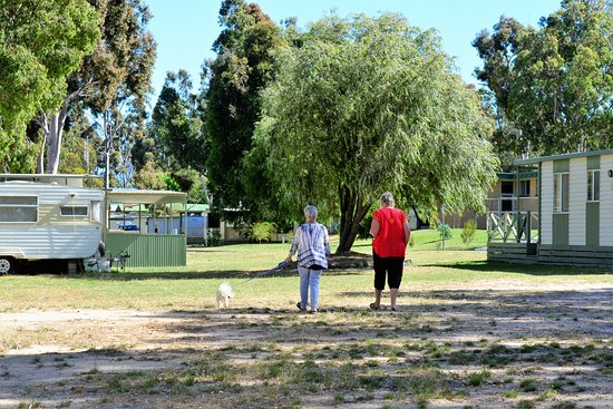 Lake Fyans Holiday Park: Stolling around the park