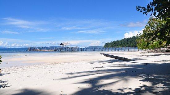 Waiwo dive resort updated 2018 prices reviews raja ampat indonesia tripadvisor - Raja ampat dive resort reviews ...